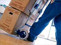 Coyote Springs Movers